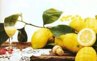 Limoni sotto grappa - Ecco la ricetta per preparare una conserva veramente insolita, ma facilissima da preparare, dei limoni conservati sotto grappa. Il risultato è una piccola delizia da servire alla fine del pasto come digestivo