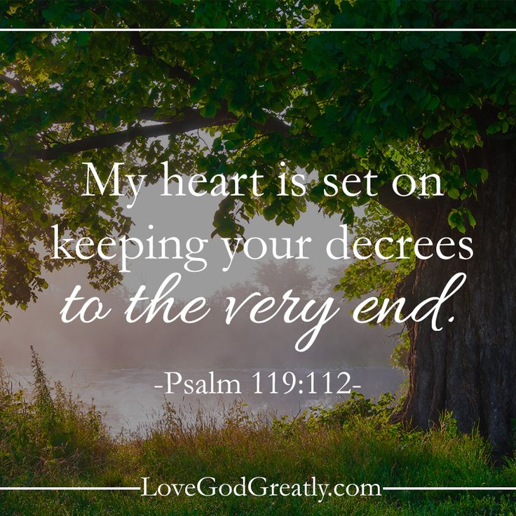 {Week 5 - Wednesday Post} Let's dig in and run hard because God wrote a book and HE is worth the read! #Psalm119 Bible Study @ LoveGodGreatly.com