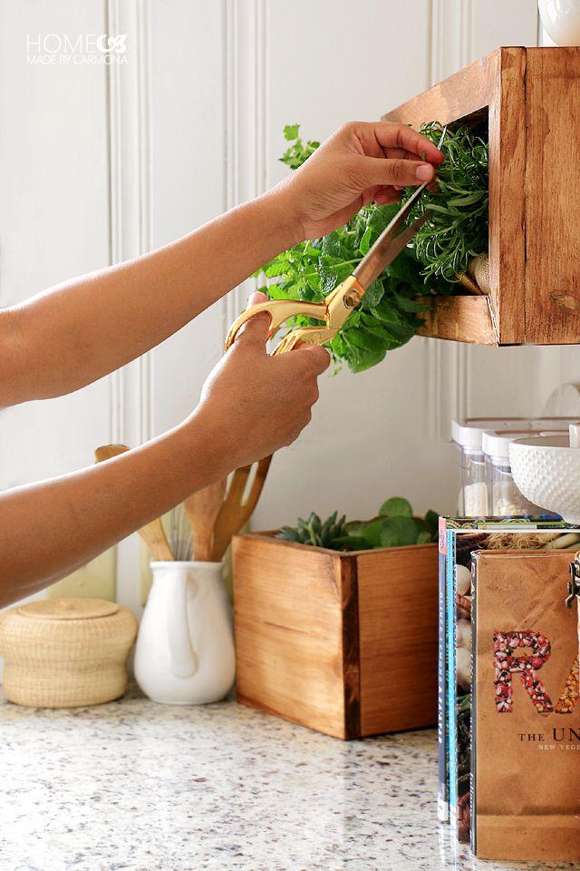 Best 25 vertical wall planters ideas on pinterest for Indoor gardening machine