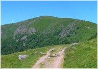 Randonnee pédestre dans les Vosges (Hohneck)