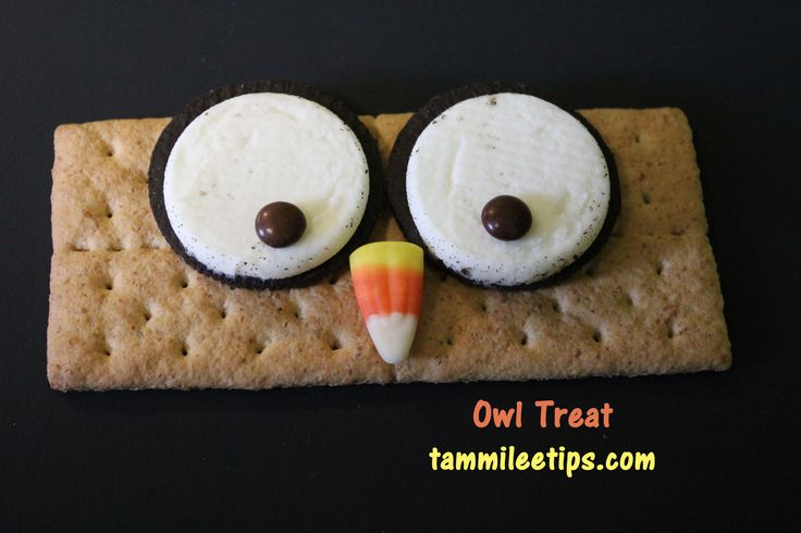 owl graham cracker treat - what kid wouldn't want this as a snack?