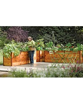 An idea for the backyard, get a little privacy and some nice flowers or plants: Gardens Ideas, Gardens Boxes, Raised Beds, Raised Gardens Beds, Cedar Rai, Elevator Cedar, Rai Gardens Beds, Gardens Design, Rai Beds