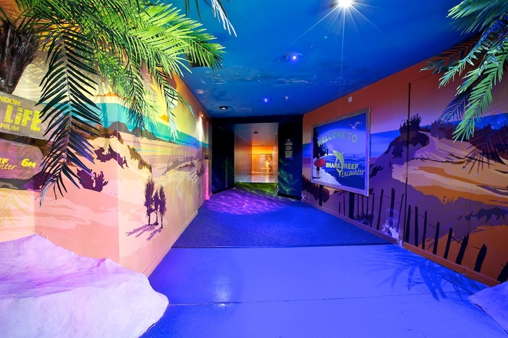 58 best sea life london aquarium images on pinterest for Pop up aquarium