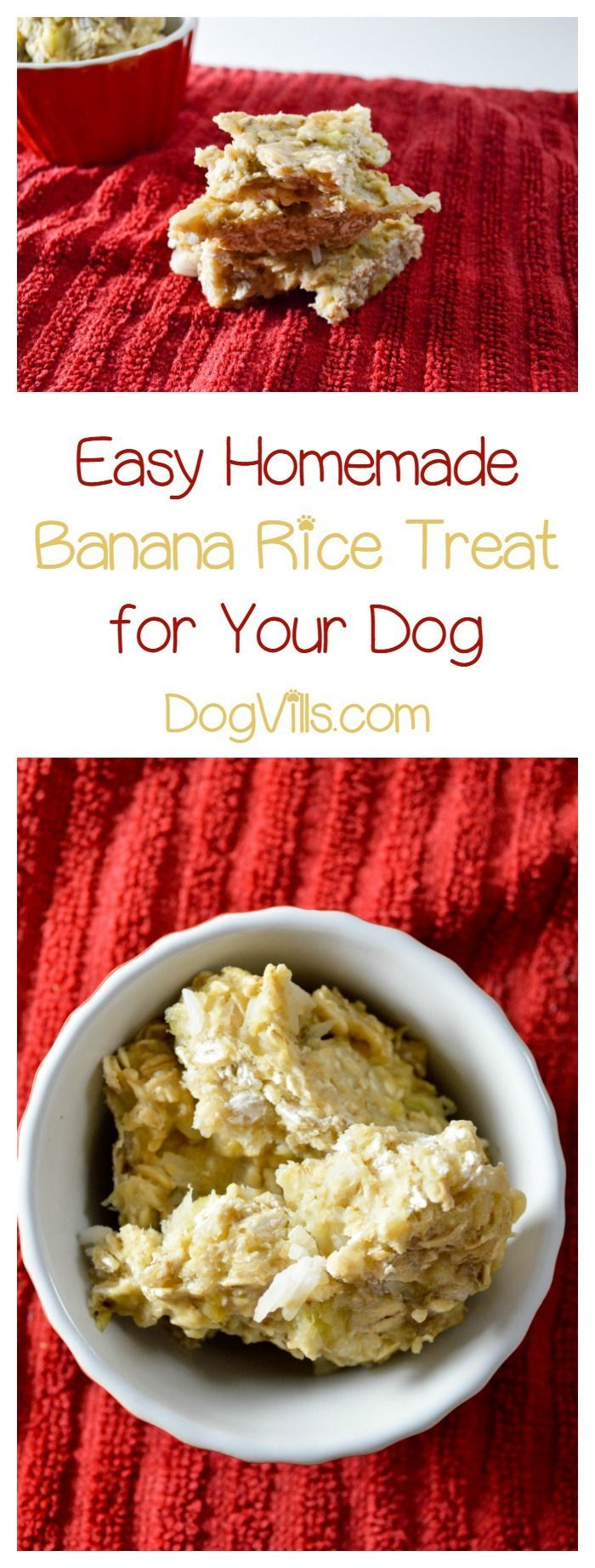 Senior dogs with fewer teeth can still enjoy homemade dog treats! This banana dog treat is soft and tasty, perfect for your older pooch!