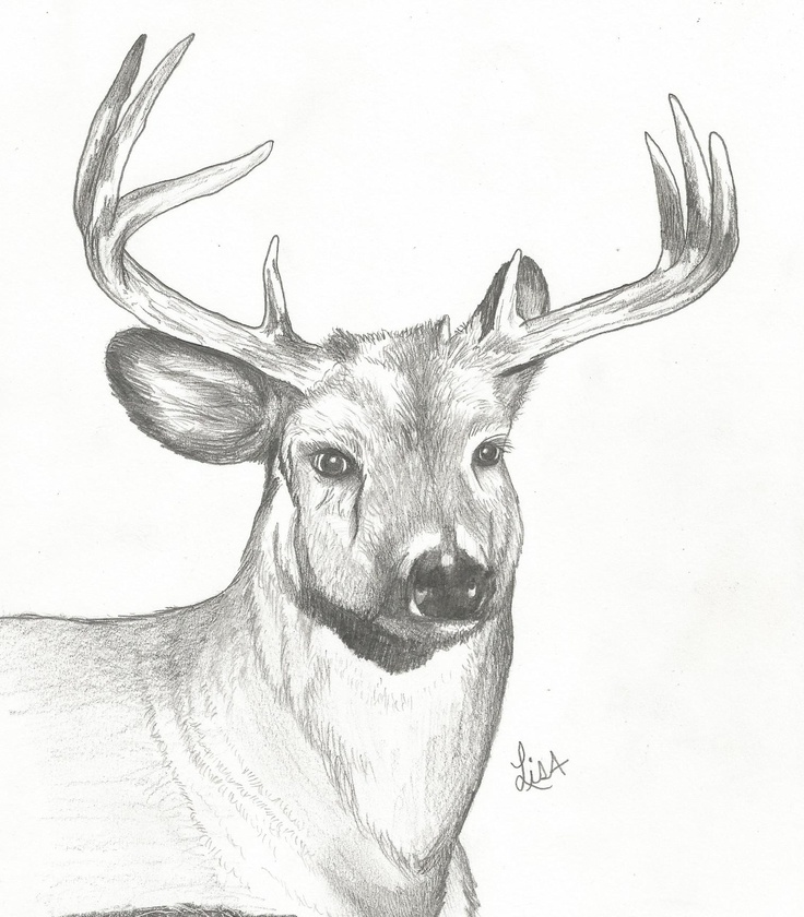 deer in the works kurt vonnegut Each month a different story will be selected out of kurt vonnegut's collection of short stories deer in the works miss temptation unready to wear.