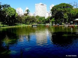 Novela especies de ranas y un renacuajo fueron descubiertas en el Parque das Mangabeiras en la década de 1980