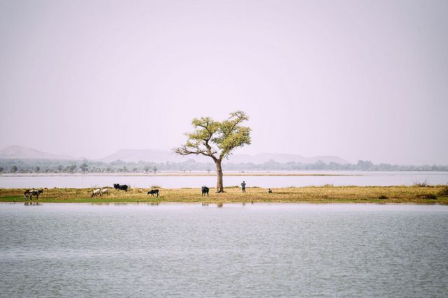 West African lake a field laboratory for long-term landscapes research
