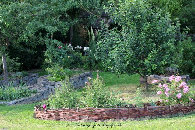 die besten 25 mirabellenbaum ideen auf pinterest kirschbaum pflanzen rechtenbach und. Black Bedroom Furniture Sets. Home Design Ideas