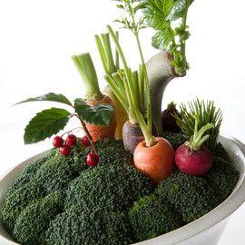 Ikebana with vegetables is called morimono. contemporary vegetable - 岡寛之 hiroyukioka design +1ichi