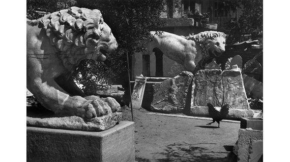 Φωτογραφία από το Αρχείο του Ανδρέα Εμπειρίκου