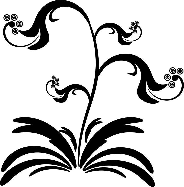 Masožravka / Carnivorous flower