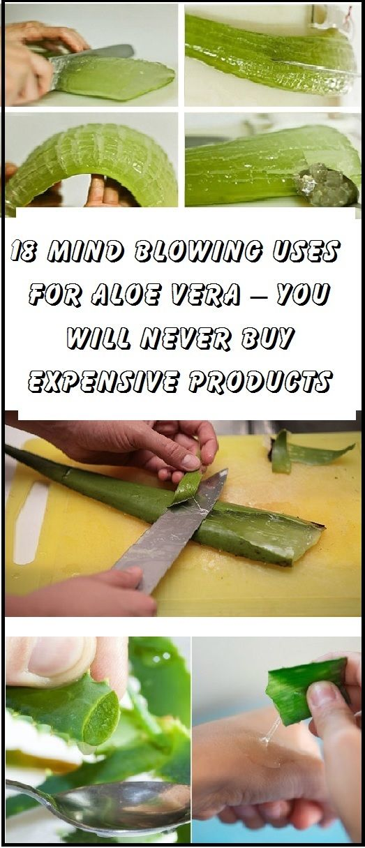 18 Mind Blowing Uses For Aloe Vera – You Will Never Buy Expensive Products Again! - NATURAL NUTRITION