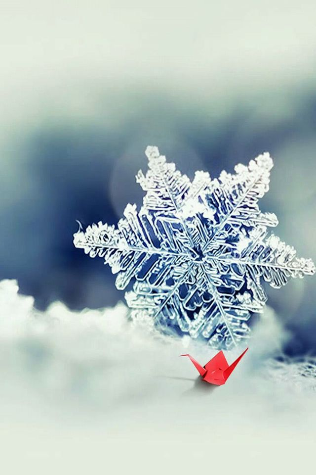 Macro Snowflake And Little Red Paper Crane #iPhone #4s #wallpaper