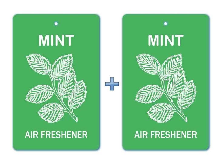 how to make mint air freshener
