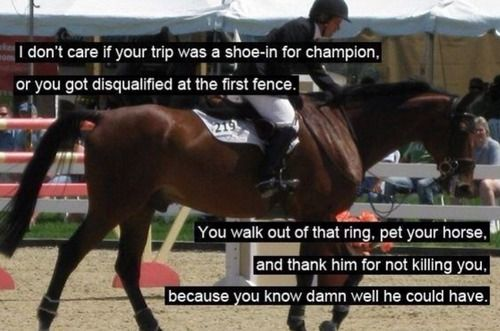 Horse Jumping Quotes