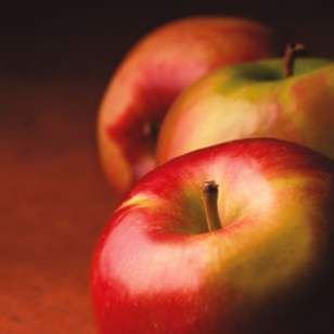 The Best Apples for Baking and Eating