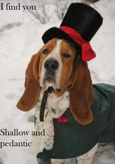 I find you shallow and pedanticDresses Up, Dogs Costumes, Christmas Outfit, Dogs Cat, Basset Hound, Christmas Carol, The Holiday, Tops Hats, Pets Costumes
