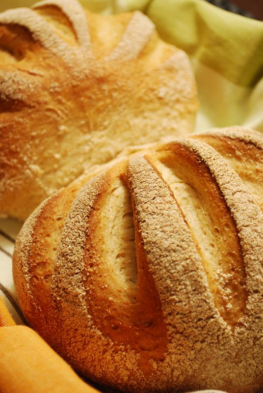 """Swedish Peasant Bread """"It's grainy, but soft and light, with a fabulously complex set of flavors. By turns tangy andsweet in perfect mild balance, with a wonderf..."""