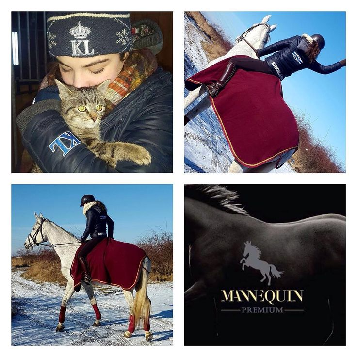 Wonderfull weekend impressions from Emma and Berlina - perfectly dressed for the cold weather! Thank you @vlamarkovic027 for those beautiful pictures! #beautiful #equestrian #weekend #horsebackriding #horses #cat #kingsland #kingslandequestrian #mannequin #trencin #slovakia