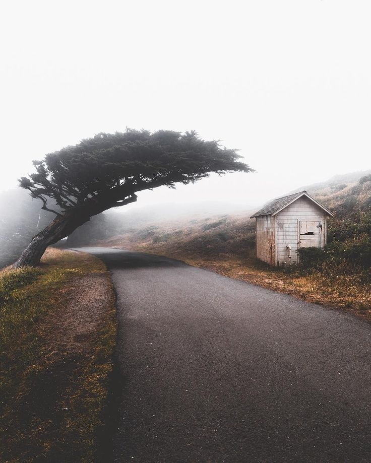 Marvelous Nature Landscapes by Zachary Edward Martgan #inspiration #photography