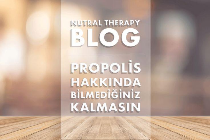 Propolis hakkında bilmediğiniz kalmasın. Nutral Therapy Blog size propolis hakkında Türkiye'nin en geniş arşivini sunuyor. Kaynak: https://www.nutraltherapy.com/propolis-nedir-faydalari-nelerdir-nasil-kullanilir/