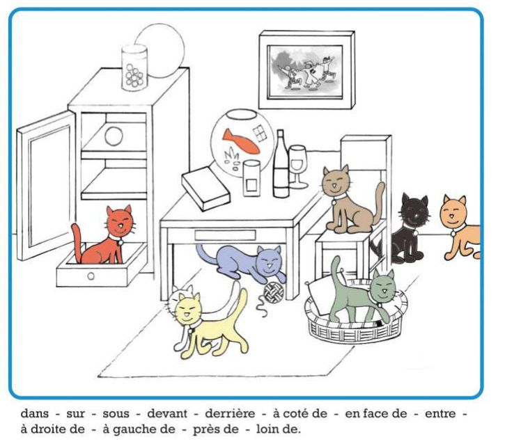 prépositions + couleurs. Où sont les chats?