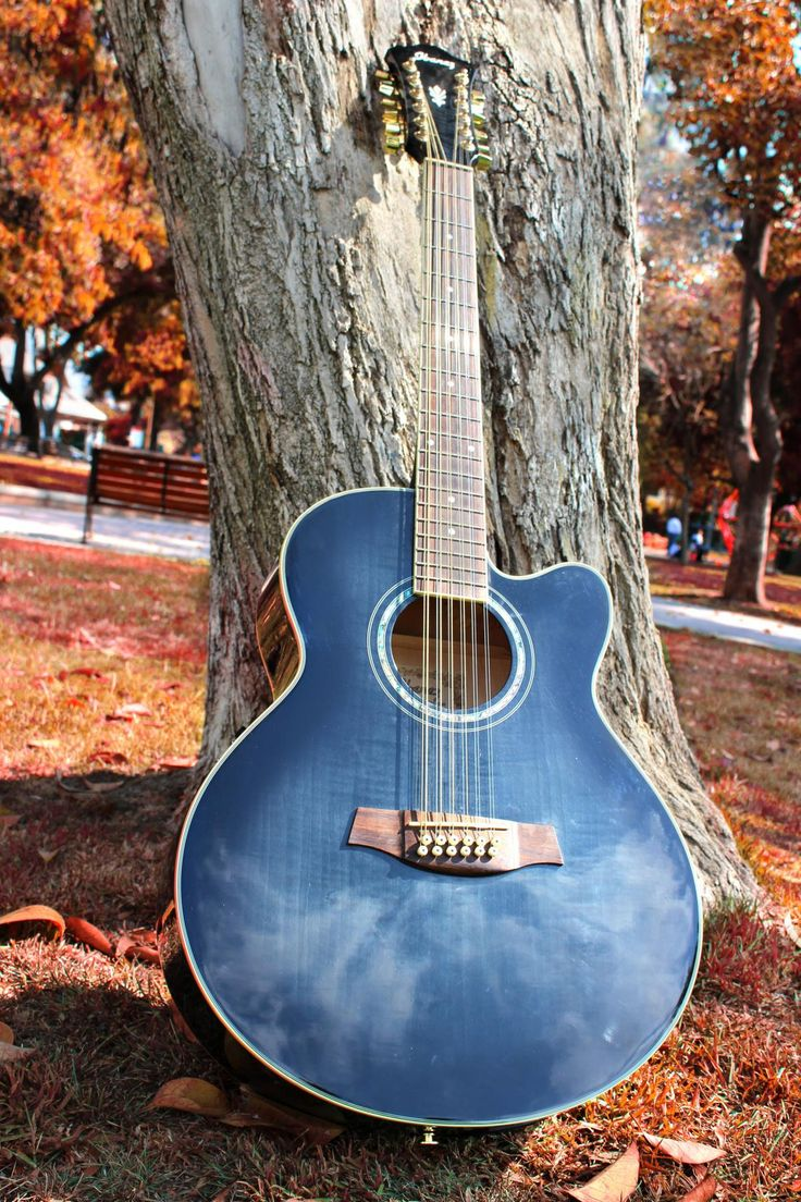 🔝 Blue Cut Away 12 String Guitar - get this free picture at Avopix.com    ▶ https://avopix.com/photo/42802-blue-cut-away-12-string-guitar    #guitar #stringed instrument #musical instrument #acoustic guitar #music #avopix #free #photos #public #domain
