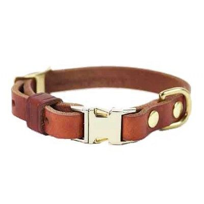Olive - Bold Designs Collar and Lead Set - Dog Collars & I.D. Tags