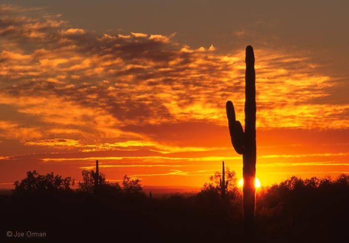 top thar desert sunset - photo #37