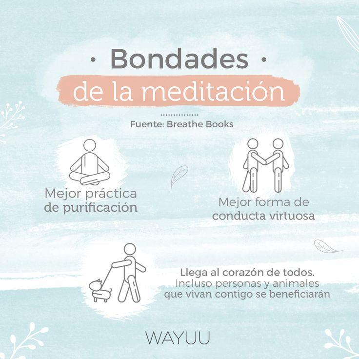 ¡Comienza a experimentar las bondades de la meditación durante cualquier día de la semana en #Wayuu! ● Tecnología Synchronicity | Lunes ● Heart Coherence | Martes ● Con Cuencos | Miércoles ● Con Ángeles | Primer y último Jueves del mes ● Sanación | Viernes