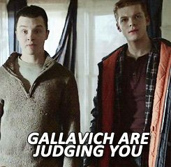 Gallavich are judging you.
