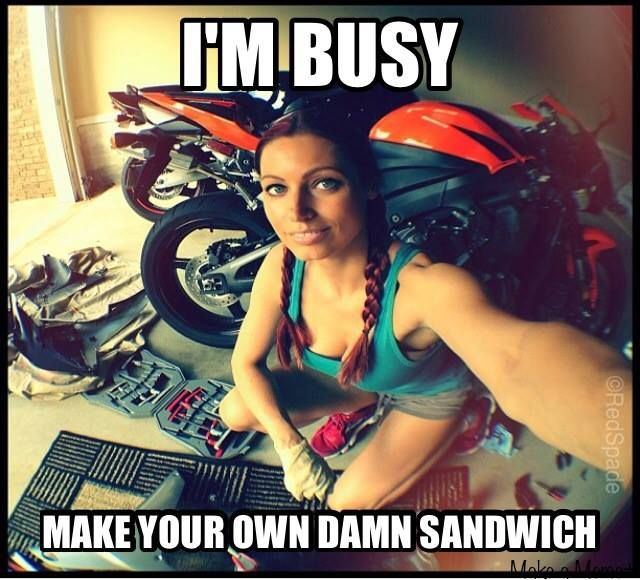 I'm Busy, Make Your Own Damn Sandwich