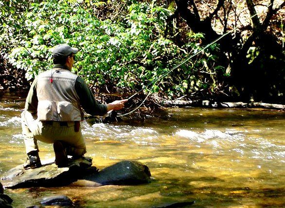 43 best the waters of north georgia images on pinterest for Fly fishing north georgia