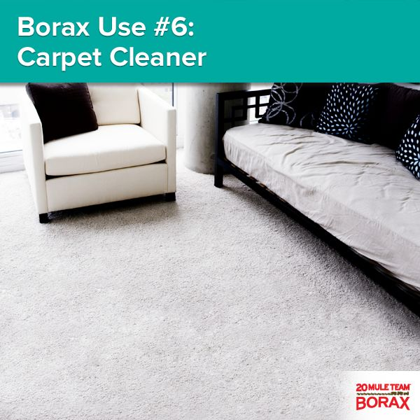 Borax Use #6 - Carpet Cleaner: Get rid of carpet stains by using 1/2 cup of 20 Mule Team Borax per gallon of water in carpet steam cleaning machines.