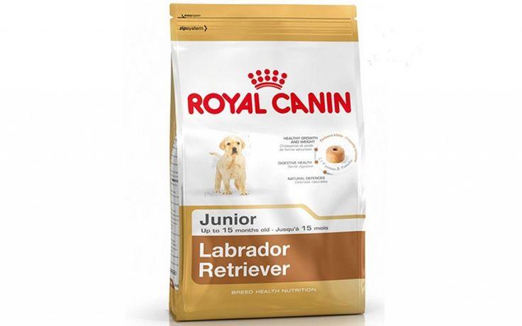 Buy Royal Canin Labrador Junior 3kg Dog Food @ ₹1432.00 #PetSupplies #DogFood #RoyalCanin Amazon India Flipkart