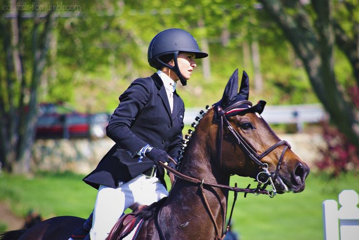 17 Best Images About Great Riders In Equestrian Sport On