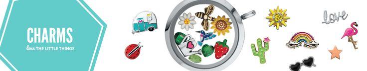 Origami Owl Jewelry - ladybug, flower, bee, strawberry, flamingo, cactus, sun, rainbow, hummingbird charms