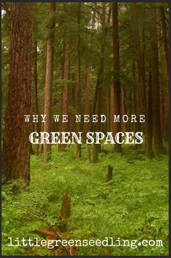 Why we could all benefit from having more green spaces to enable us to go out in nature more often.
