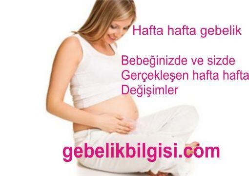Hafta hafta gebelik gebeliğin 1. haftasından 40. haftasına kadar anne ve bebek neler yaşar...