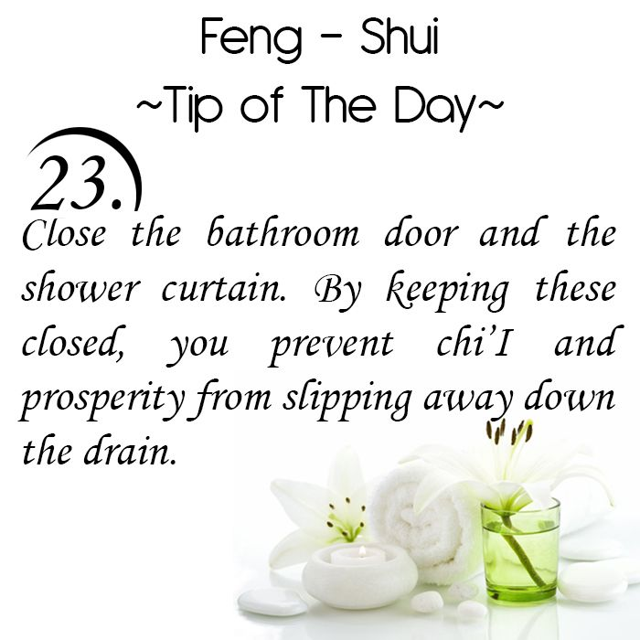 Feng Shui Tip of the Day: 23. Close the bathroom door and the shower curtain. By keeping these closed, you prevent chi'I and prosperity from slipping away down the drain.  Get the Vastu experts advice for your home from renowned Vastu Expert Ms. Manisha Koushik.