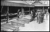 Image result for Morgue Photos of Titanic Victims
