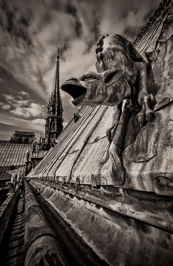 Gargouille de la cathédrale Notre-Dame de l'Annonciation de Moulins. Description from pinterest.com. I searched for this on bing.com/images