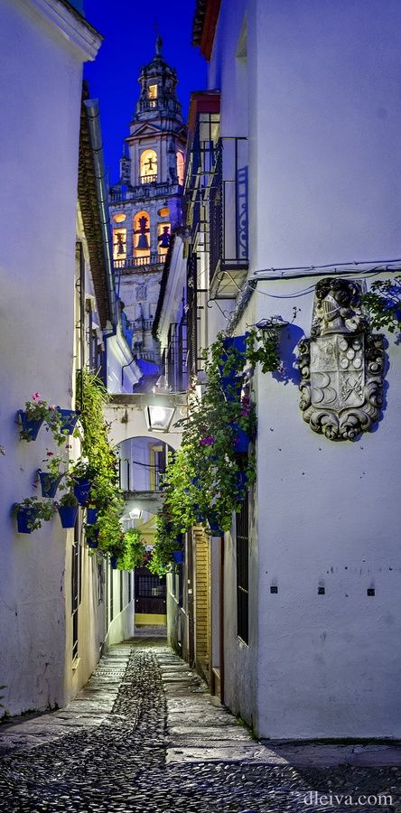 Flower Alley - Cordoba, Spain Treppen Stairs Escaleras repinned by www.smg-treppen.de #smgtreppen repinned by @OzeHols