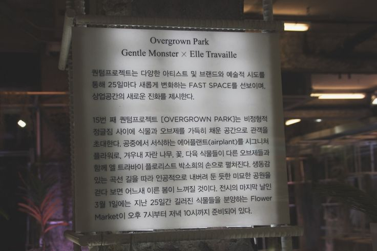 Gentle Monster X Elle Travaille | blindingmoonlight | VSCO Journal