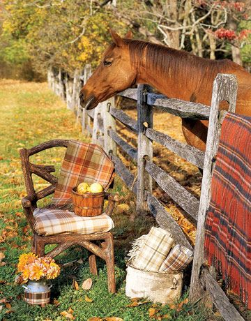 Country Living: Idea, Horses, Autumn, Fall, Country Living, Country Life, Tartan, Plaid Blanket