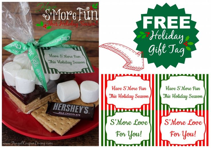 S'Mores Gift Bag with FREE Holiday Gift Tag Printable on Frugal Coupon Living - This is an EASY Christmas Gift Idea, Great Teacher Gift or Postal Gift.