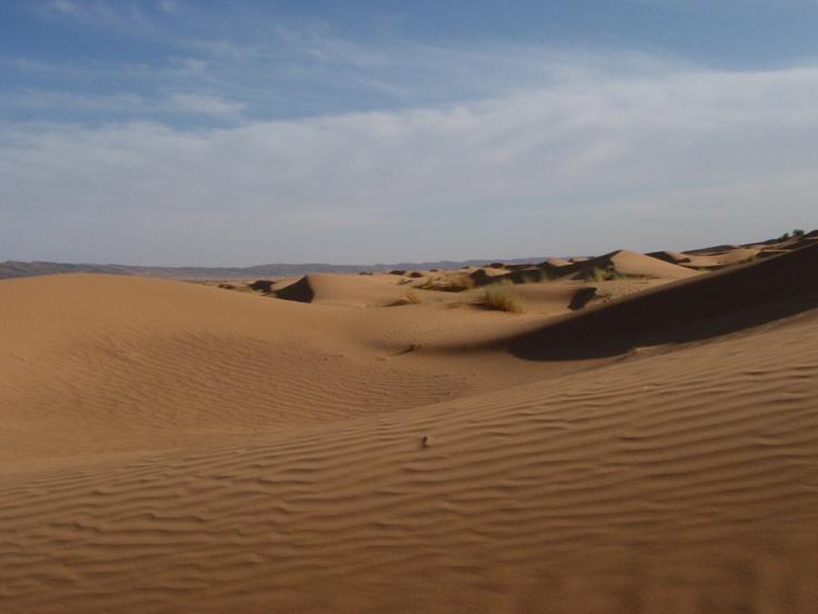 Sahara Desert, November 2011