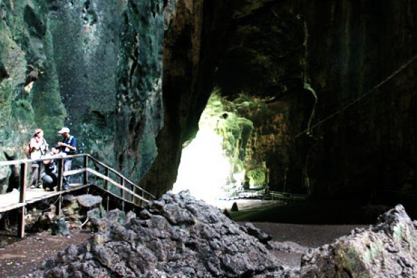 There are two cave complexes – Simud Hitam (Black Cave) soaring up to 90 metres high and the more accessible of the two, and Simud Putih (White Cave), where the more valuable nests are found. Read more @ http://www.marvelousvacation.com.my/gomantong-cave/