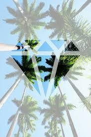 Resultado de imagen para fondos de palmeras de muchos colores para wsp