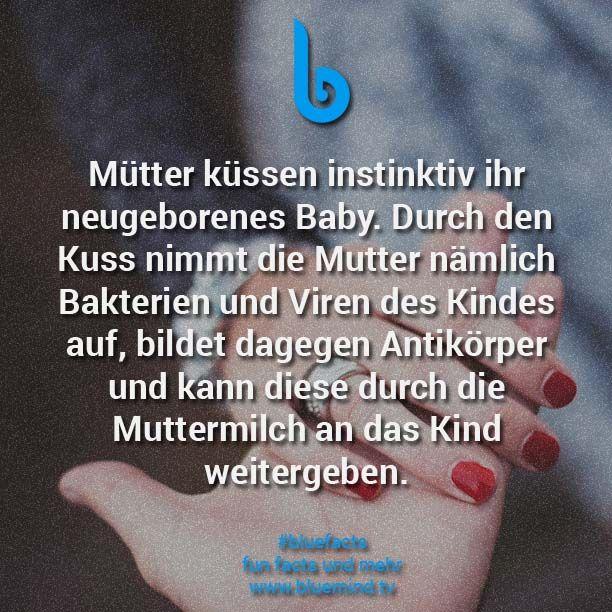 Mütter küssen instinktiv ihr neugeborenes Baby. Durch den Kuss nimmt die Mutter nämlich Bakterien und Viren des Kindes auf, bildet dagegen Antikörper und kann diese durch die Muttermilch an das Kind weitergeben.